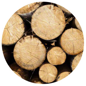 Verpackungsmaterial Holz