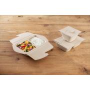 To-Go-Box aus Zellstoff