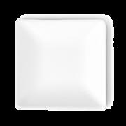 Mini-Teller aus Bagasse